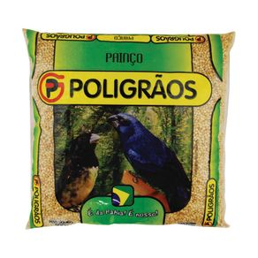 PAINCO-POLIGRAOS-500G